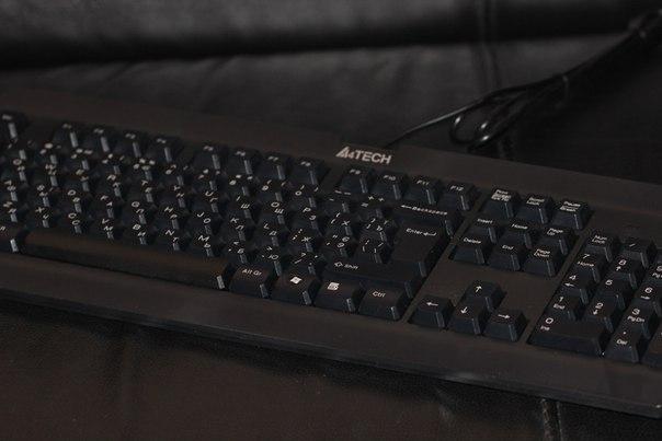 A4Tech K-100: недорогая защищенная от влаги клавиатура для дома или офиса